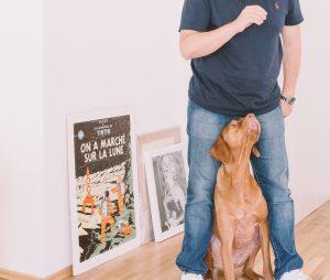 cachorro com o dono